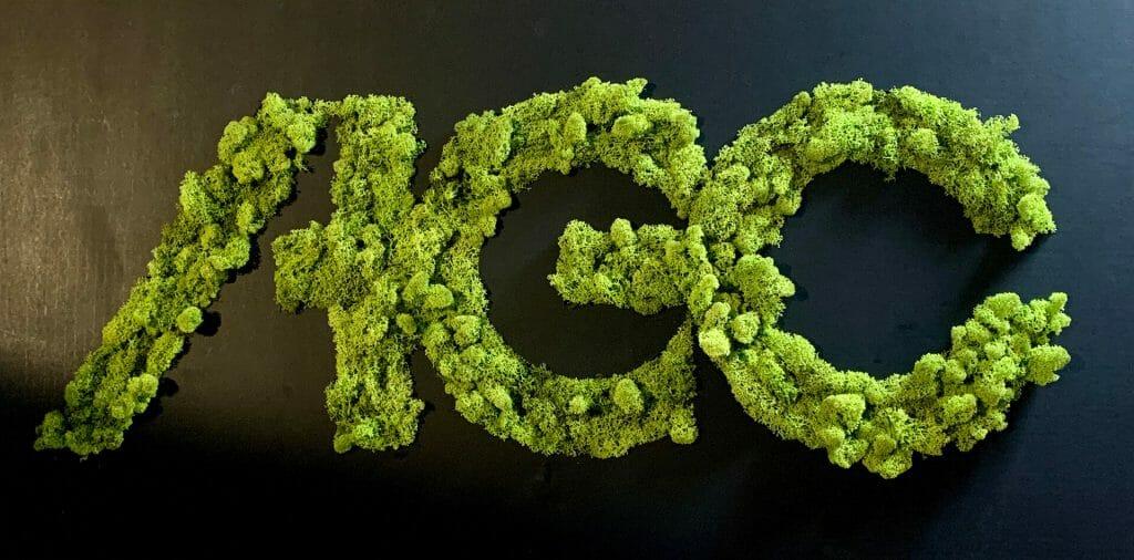 lettere con licheni stabilizzati